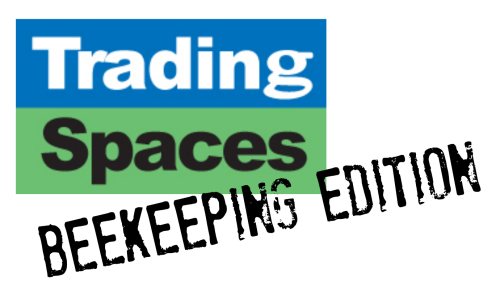 trading spaces logo.png
